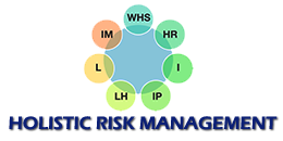 Go to Holistic Risk Management