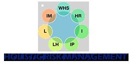 Go to Holistic Risk Management